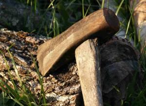 Eine Axt steckt im Baumstumpf.