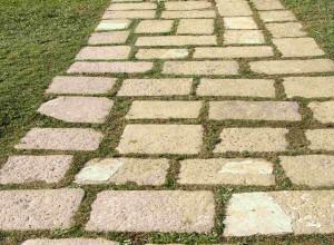 Steinweg mit Pflastersteinen und mit Gras bewachsene Fugen.