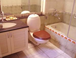 Badezimmer mit Badewanne, Toilette und Dusche.