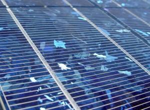 Solarmodule in Nahaufnahme.