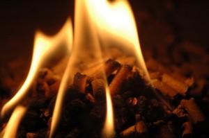Brennende Pellets om Kamin.