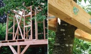 Baumhaus wird ohne Nägel befestigt.