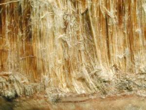 Gerade ältere PVC-Böden können Asbestfasern enthalten.