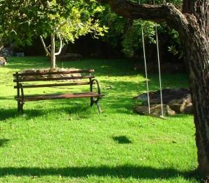 Garten mit grünem Rasen und einer Bank.