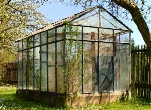Gewächshaus für den Garten.