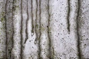 Feuchte Wand als Nährboden für Schimmel.