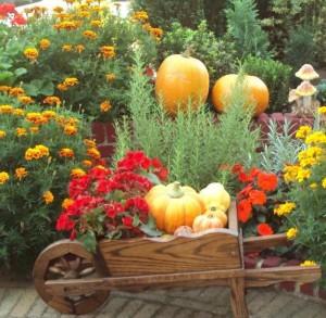 Auch im Herbst gilt es den Garten zu pflegen.