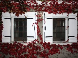 Vor allem bei älteren Gebäuden mit Originalfenstern gilt es abzuwägen, ob die befintlichen verbessert werden könnten oder, ob es Zeit für einen Austausch ist.