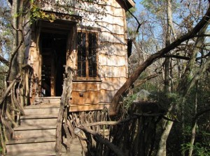 Das Tree House fügt sich ganz natürlich in die Umgebung ein. Foto: The Phoenix Commotion